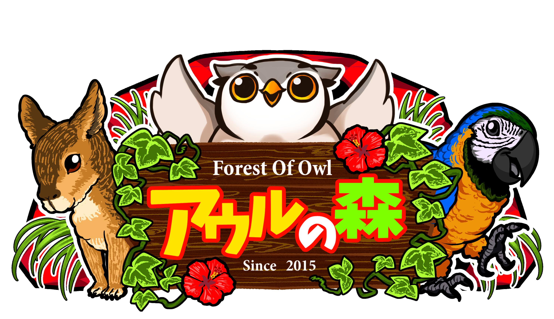 アウルの森 フクロウカフェ owlcafe in tokyo